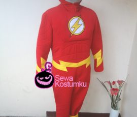 Sewa Kostum Super Hero The Flash