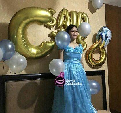Sewa Kostum Cinderella Dewasa Jakarta