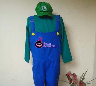 Sewa Kostum Luigi Size L